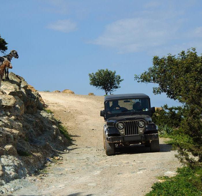 Советы автопутешественникам по Кипру