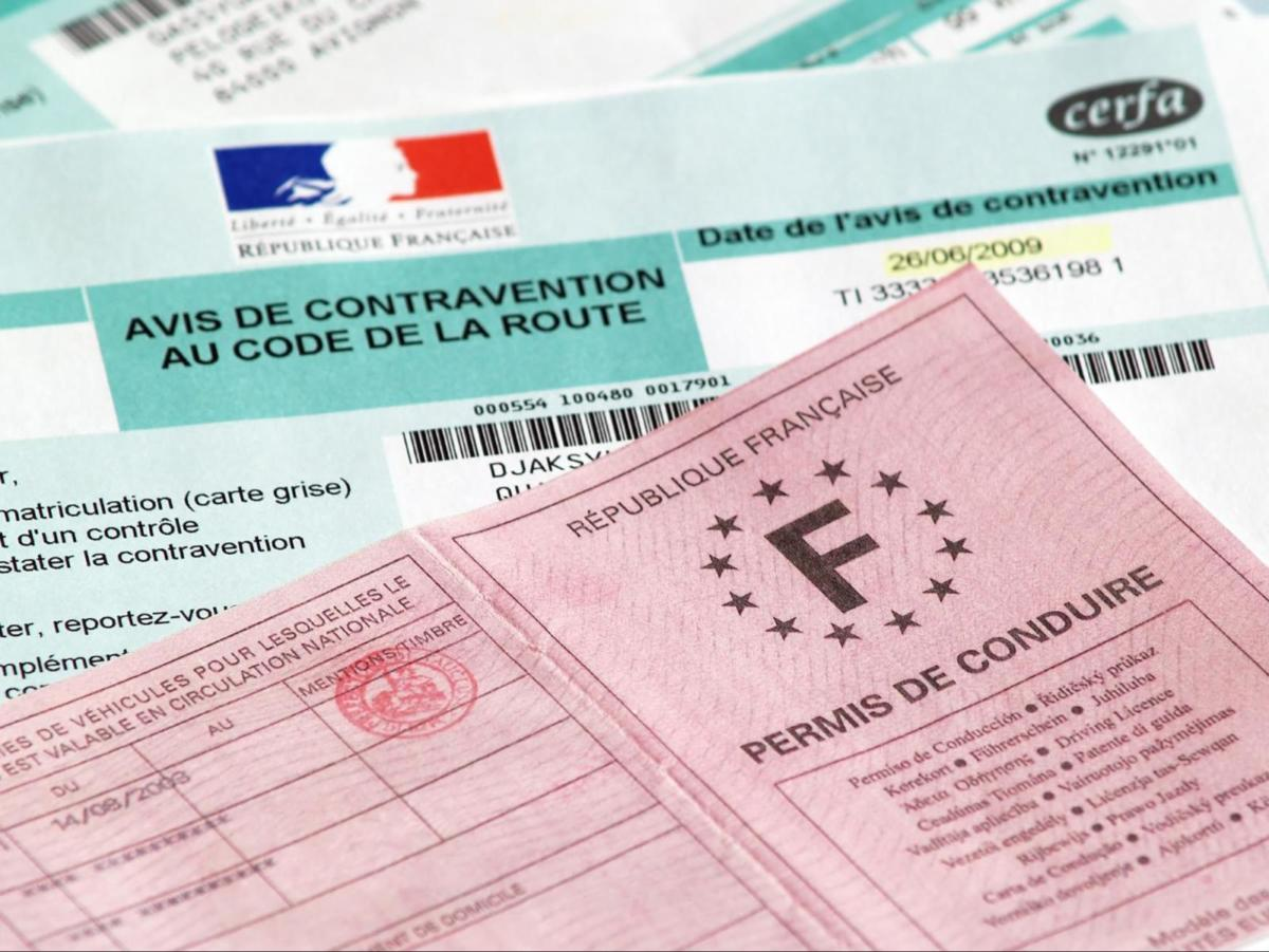 French Driver's License