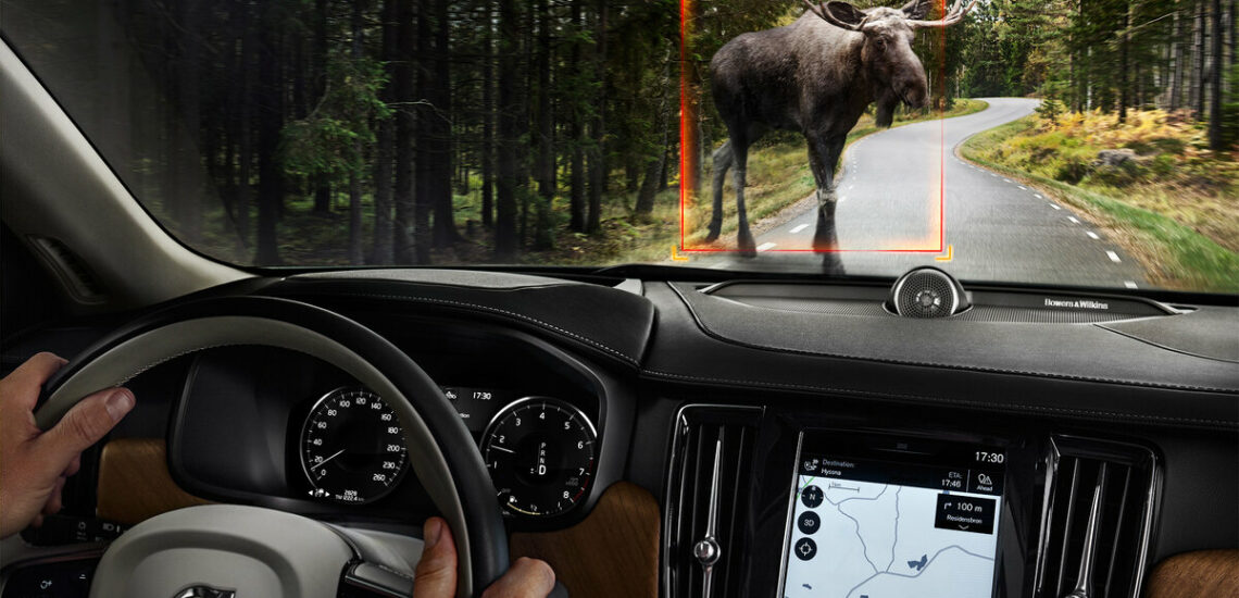 All about the moose test